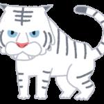 ec-youkai_byakko